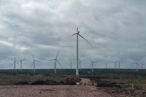 Black Law Windfarm