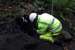 Inspecting a small sett mid excavation