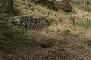 Subsidiary sett with limited signs of badger activity
