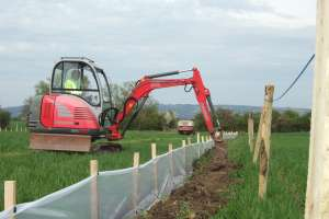 Great crested newt fence installation